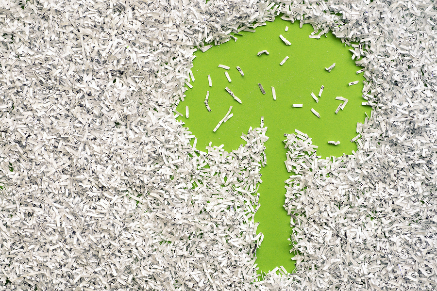help document disposal go green sustainable paper shredding save tree