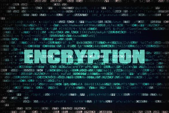 Keep your data secure with encryption services.