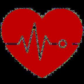 Medical Record Shredding Services