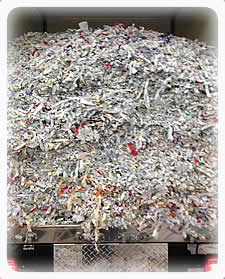 ERTH Systems Shredding