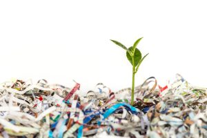 sustainable shredding greener industry shredded paper